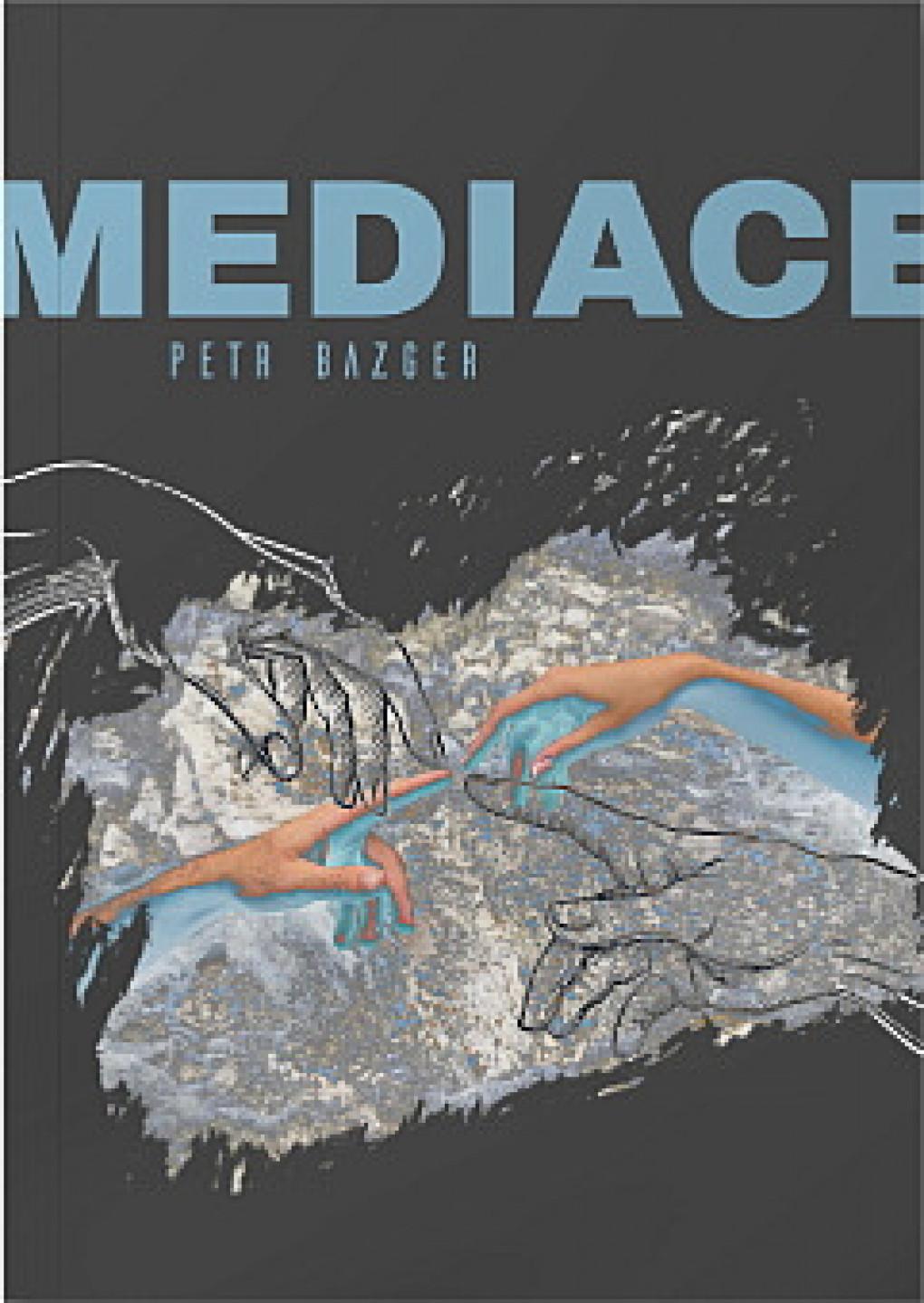 mediace-bhy-426026.jpg