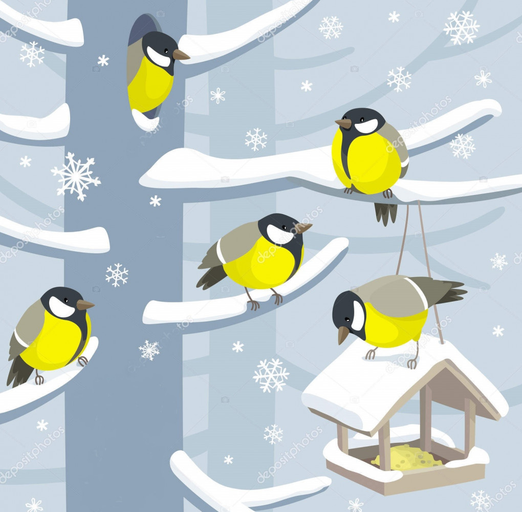 ptaci.jpg